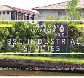 Bachelor of Industrial Studies