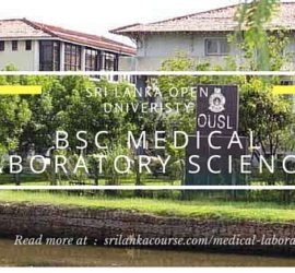 Medical Laboratory Sciences