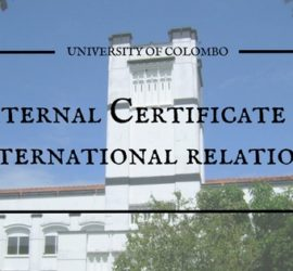 International relations courses